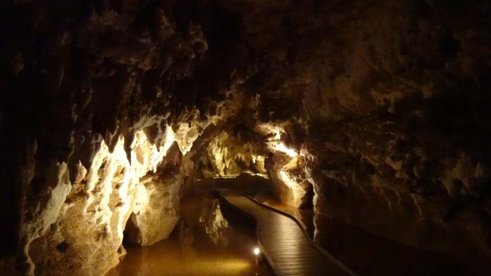 Te Anau Cave NZ